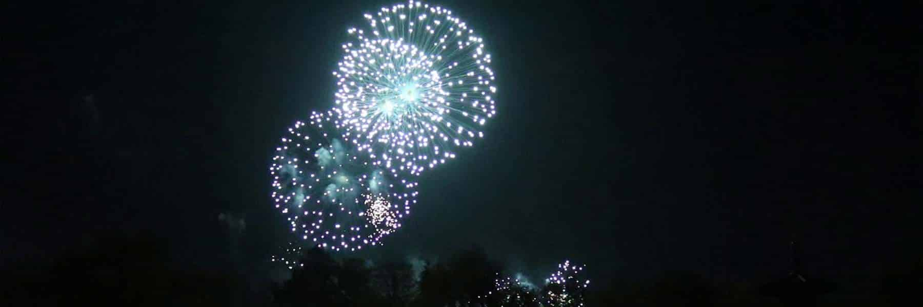 Battersea Park Fireworks Display